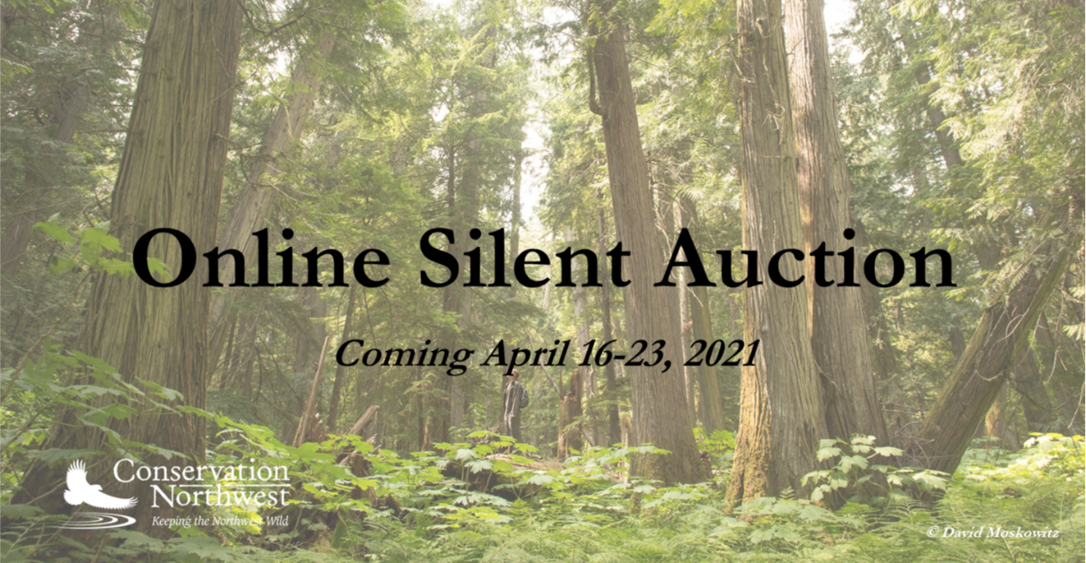 2021 Hope for a Wild Future Online Auction