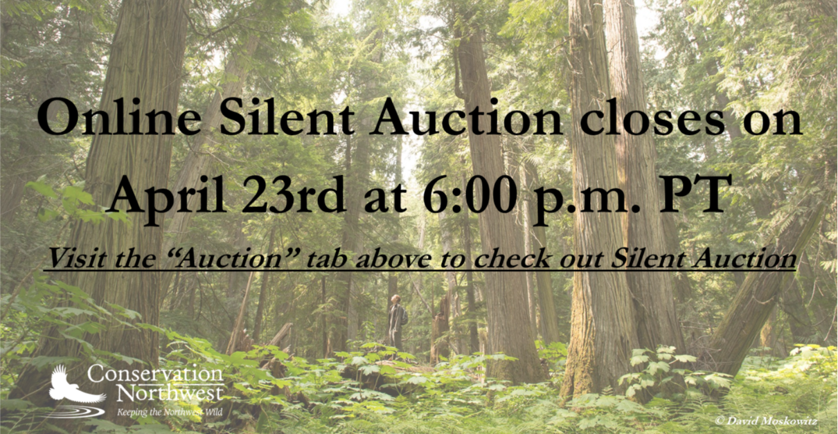 2021 Hope for a Wild Future Online Silent Auction